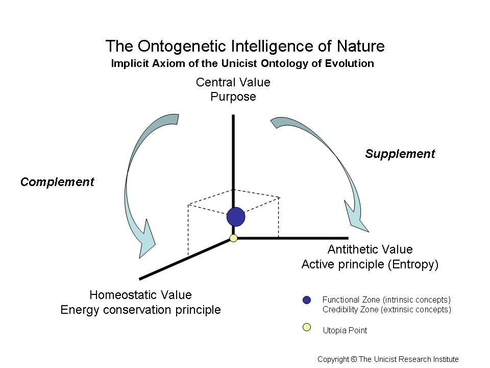 the evolution and nature of school Teaching of 6-day creationism in state-funded school science lessons (ipsos   misconceptions about evolution and the nature of science – evolution is not.
